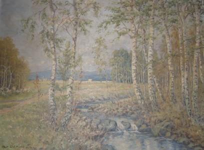 Birkenlandschaft